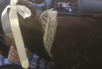 Жеребец выебал толстым хуем студентку в машине